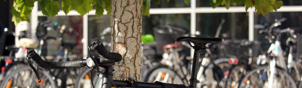 SPD Antrag: Mobilitätskonzept und Mobilitätsmanagement